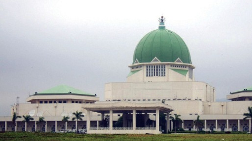 National Assembly: A House Divided Against Itself